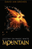 Destiny on Magic